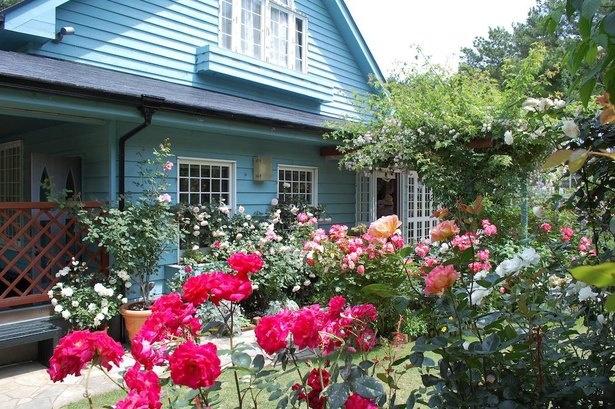 「洋風の庭」では洋風の伝統の流れを汲み、初心者でも始められるガーデンライフを提案