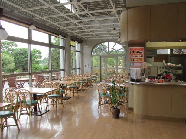 「夢花館」内のカフェでは庭園を眺めながら軽食が楽しめる