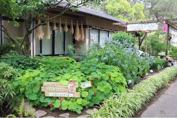 旬の野菜やハーブ、果樹などを取り入れた「田園生活指向の庭」