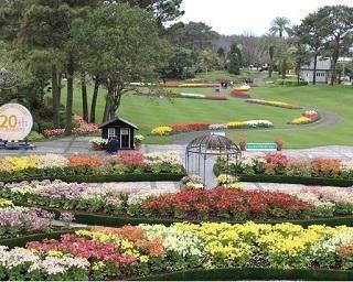 フローランテ宮崎で四季折々の植物を観賞!美しく彩るガーデニングのヒントも