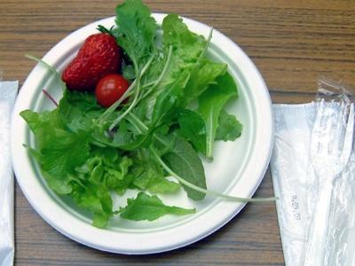 「植物工場」で採れたレタスを使ったサラダ