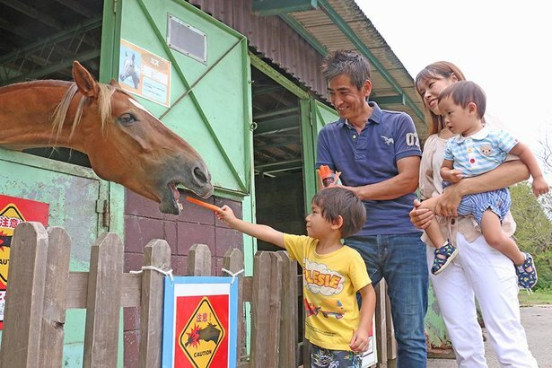 大好きなニンジンをもらった馬の表情はとってもキュート