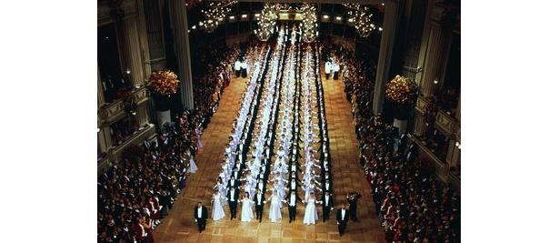 ウィーン舞踏会の様子です(1〜3番目の写真はオーストリア政府観光局より)