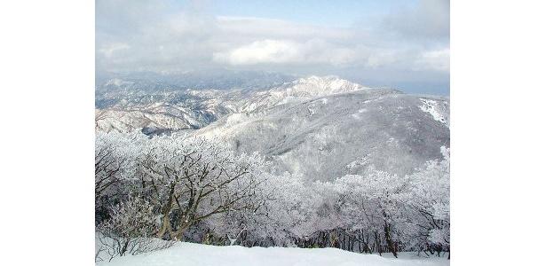 山頂から見る樹氷は幻想的