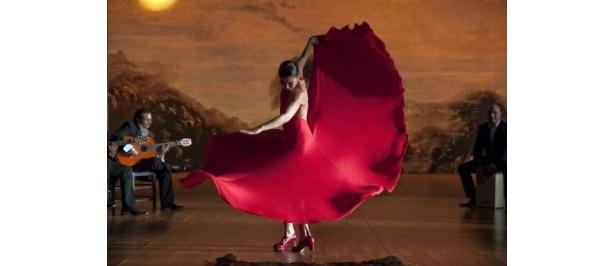 光の魔術師ヴィットリオ・ストラーロと名匠カルロス・サウラ監督によるフラメンコ映画の決定版