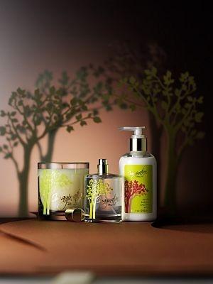 国内のディズニーストアでは初の販売となる香水シリーズが仙台の店舗で先行発売された