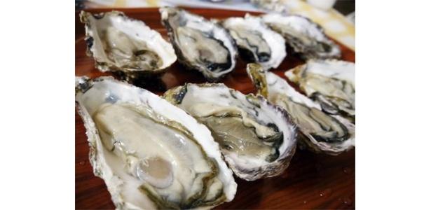 「はらまる」にて、牡蠣の殻むき&試食体験! 新鮮な牡蠣は何もつけなくてもおいしいです!