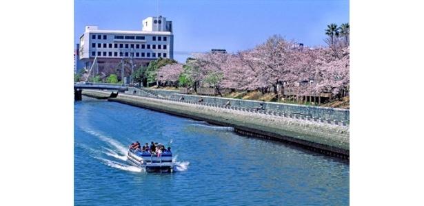 水都・徳島ならではのお祭りイベントが今年も開催!
