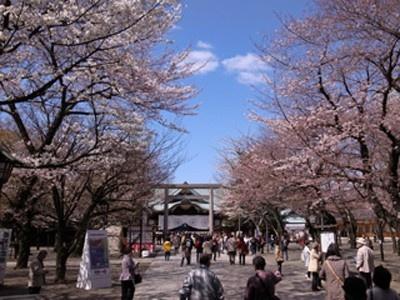 9位の靖国神社には東京地方の春の訪れを告げる、桜の開花予想の標本木となっている「靖國の桜」がある