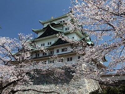 10位の名古屋城にはソメイヨシノ、枝垂れ桜を中心に約10種類1600本の桜がある