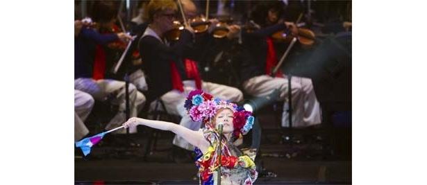 ライブ写真は2/28、日本武道館公演のもの
