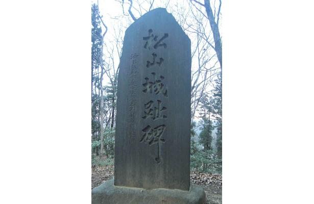 戦国武将がしのぎを削った武州松山城