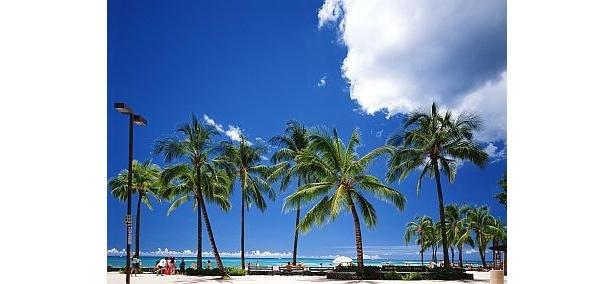 【写真】南国でリゾートを楽しむならワイキキビーチ!