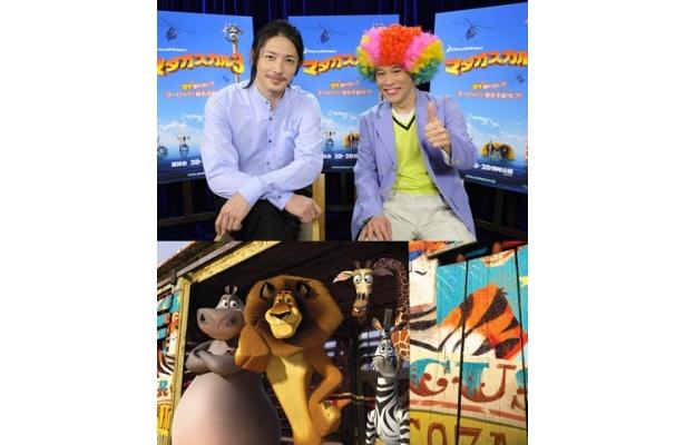 『マダガスカル3』の日本語吹替を続投する玉木宏と柳沢慎吾