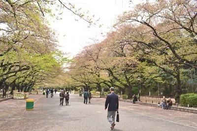 上野恩賜公園を訪れた際は、是非こちらのカフェにも立ち寄ろう