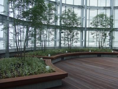 8階には空中庭園が。お弁当を持ち込んでランチなどしたい