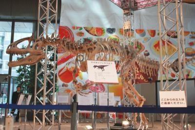 """""""凍ったトサカを持つトカゲ""""を意味するクリオロフォサウルス"""