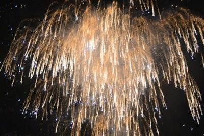 花火が上がる度に、来場者からは感嘆の声が上がった