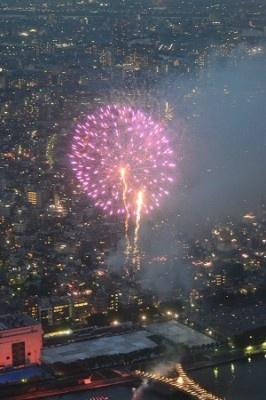 球形に広がる花火をしっかり撮影することができた