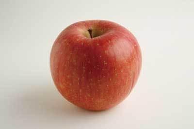 青山朝市に出店している秋田の「富樫ミヨ果樹園」のリンゴ(250円)は密がたっぷり入った極上の甘さ