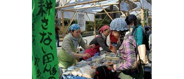 アースデイマーケットでは、都内の生産物だけでなく全国各地から旬の食材が集まる
