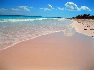 バハマの「ピンクサンドビーチ」。そのほんのり桃色の正体は細かく砕けたピンクの貝殻