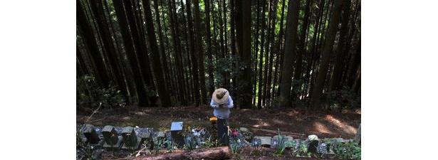 映画祭のオープニングを飾るのは奈良県・十津川村を舞台にした『祈』