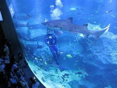 東京ソラマチ内にあるすみだ水族館