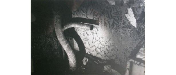 デヴィッド・リンチというアーティストを、より深く知ることができる展覧会は必見だ