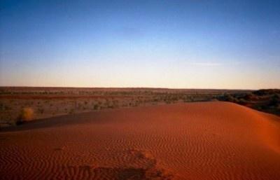 オーストラリア「シンプソン砂漠」