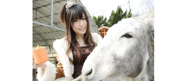 ハイ!次は馬と一緒にキメ顔勝負。どっちがかわいい??