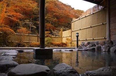 【写真を見る】老舗旅館「そこくらの湯 つたや」。山の景色も見事!