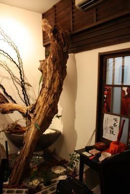 いるだけで和めるオシャレなカフェ「nagaya cafe さと和」