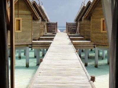 11位のコンスタンス ムーフシ リゾート モルディブ(モルディブ/南アリ環礁)