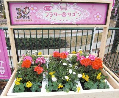 園内のあちこちに花が