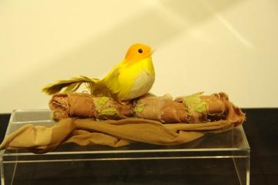 ムラサキの肩にいつもとまっている小鳥