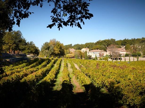 ワインは、ふたりが所有するフランスの古城シャトー・ミラヴァルのぶどう園で収穫されたブドウを使用