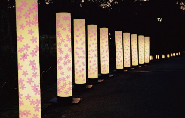 【写真を見る】その他のイベント 「サクハナ行灯」(円山公園)