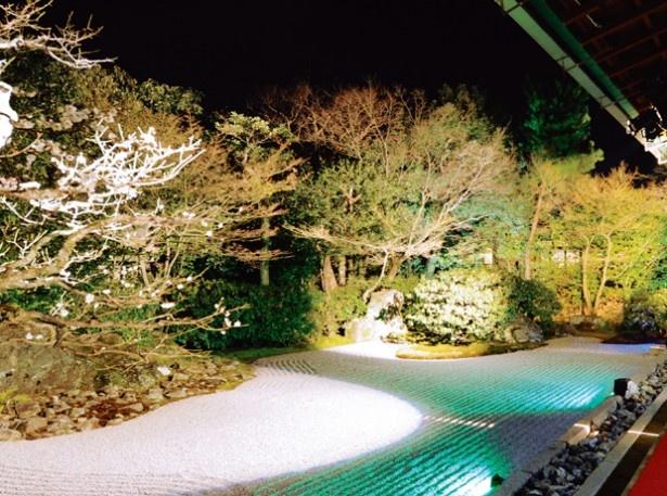 限定公開される長谷川等伯、赤松燎画伯の襖絵も必見「圓徳院」