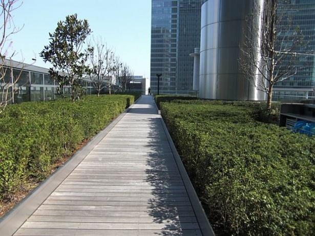 東京駅丸の内駅舎を眺められる絶景ポイント「KITTEガーデン」