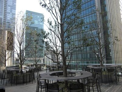 テラス席を唯一用意するレストラン「アルカナ東京KARATO」のメインテーマは「野菜の美食」