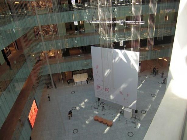 内装環境設計は建築家の隈研吾氏が担当