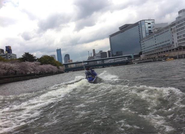 堂島川を波を切って走る!天満橋付近