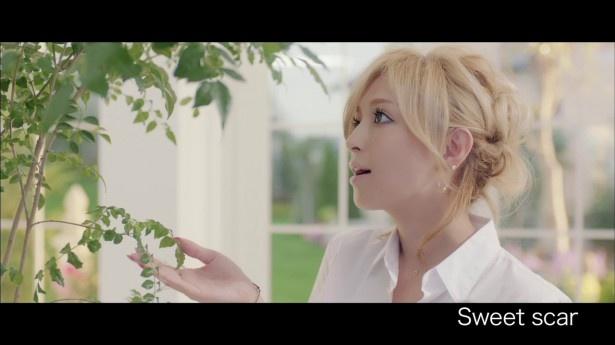 4月8日でデビュー15周年を迎える浜崎あゆみ(写真は「Sweet scar」のミュージックビデオ)