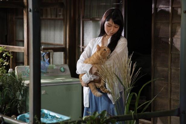 """【写真を見る】宮崎あおいに抱えられても冷静に演技をする""""トラさん""""とは?"""