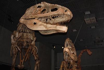 マプサウルスの親子も待ってるよ!