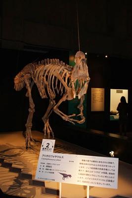 南極大陸の恐竜「クリオロフォサウルス」