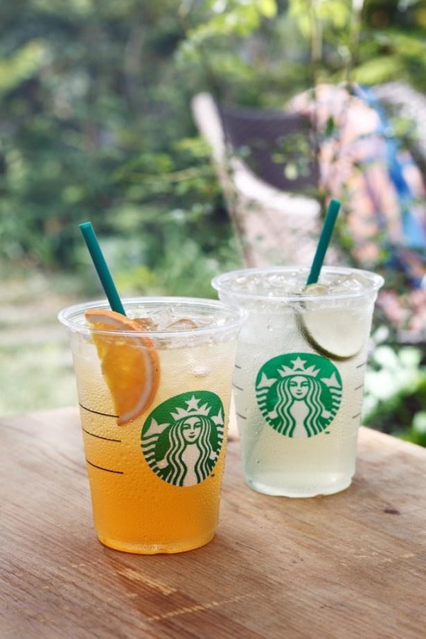 カフェイン効果で頭もスッキリ!気分もシャキッ!爽やかな喉越しは夏にぴったり!