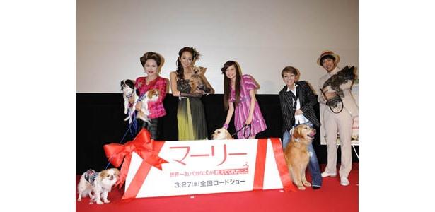 ベッキー、研ナオコ、デヴィ夫人、神田うの、金子貴俊と、愛犬家たちが登壇
