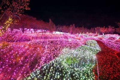 【写真を見る】音に合わせて光色が変化 したり、光が波打ったりする